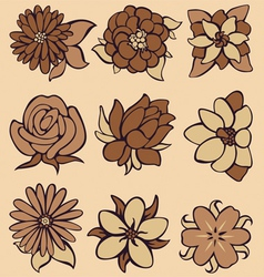 Flower coffee vector