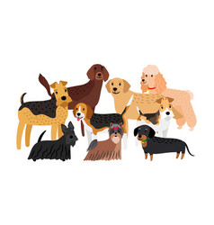 group hunting dogs breeds vector image