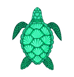 Sea turtle in line art style Hand drawn Set of vector image