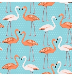 Flamingo couple seamless pattern on blue polka dot vector image vector image
