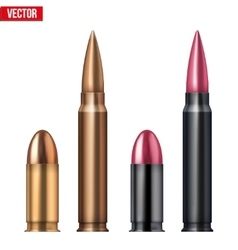 Rifle and revolver Bullets vector image vector image