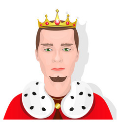 bearded king with a crown vector image