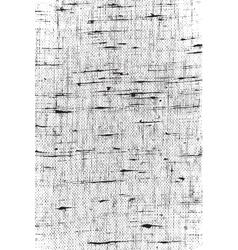 Linen Overlay Background vector image vector image