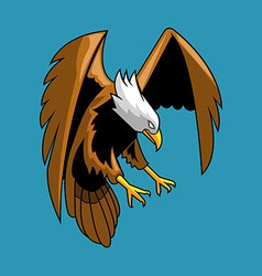 Bald Eagle vector image