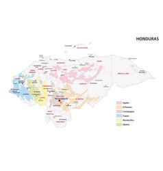 Map coffee growing regions honduras vector