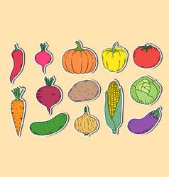 Stickers with hand drawn vegetables vector