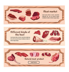 hand drawn fresh meat horizontal banners vector image