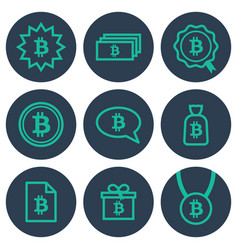 set of icons about money with bitcoin symbols vector image