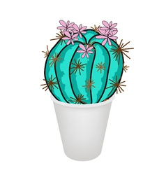 Cactus Plant and Pink Flower in A Flowerpot vector