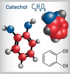 catechol pyrocatechol molecule - structural vector image