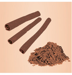 cinnamon sticks and powder vector image