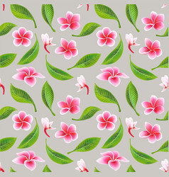exotic tropical flowers hibiscus frangipani and vector image