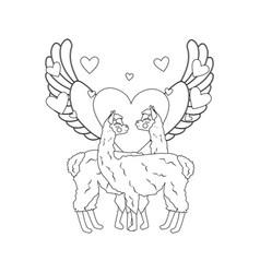 Llama in love outline vector