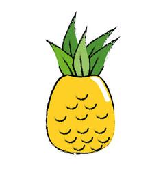 Pineapple fruit nature vector