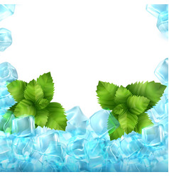 realistic ice cubes and mint vector image