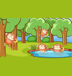 scene with monkeys in forest vector image