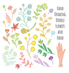 set of summer flowers delicate shades vector image