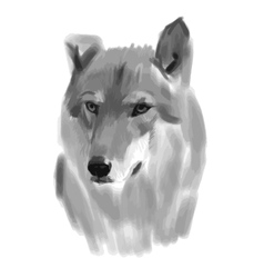sketch of a wolf face vector image