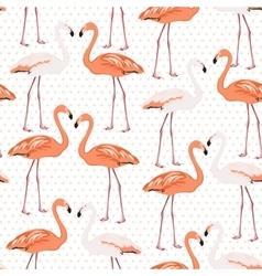 Exotic flamingo wading bird couples beak to beak vector