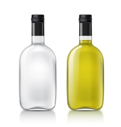 Template of glass bottle vector image vector image
