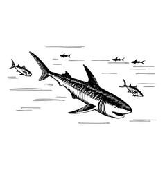 marine fish predators vector image vector image