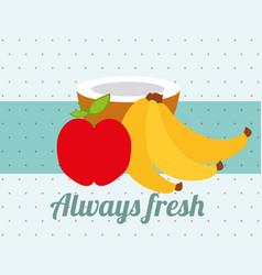 always fresh nature nutrition fruits apple banana vector image