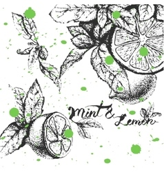 background design with lemon and mint vector image