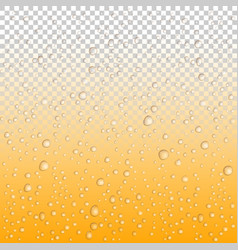 beer drops on glass water drops on glass rain vector image