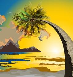 Palm trees on beach at dusk vector
