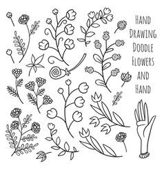set of summer flowers vector image