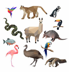 South america animals low poly i vector