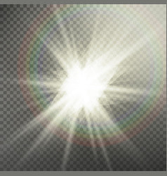 Sunlight special lens flare light effect light vector