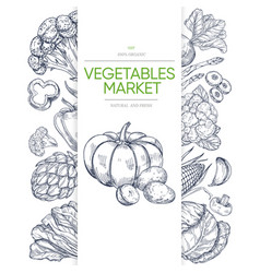 vegetable markets banner template with hand drawn vector image