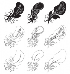 fluff and feathers vector image vector image