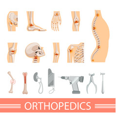 orthopedic icons set human skeleton bones and vector image