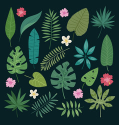 tropical leaves flowers tropic hibiscus vector image vector image