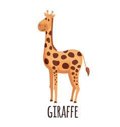 cute giraffe in flat style vector image vector image