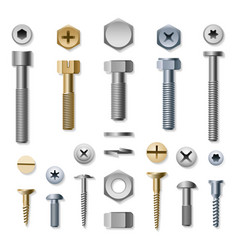 bolts and screws vector image