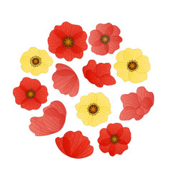 circle composition of red and yellow poppy vector image