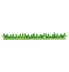 Grass Bar Border vector