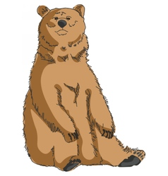 Grizzly bear isolated vector image