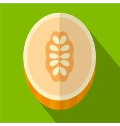 Melon flat icon vector