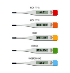 Thermometer with explanation temperature types vector