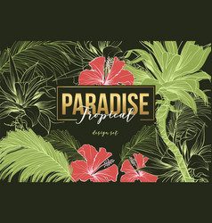 tropical paradise banner template vector image