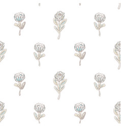 protea flower seamless pattern vector image