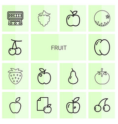 14 fruit icons vector image