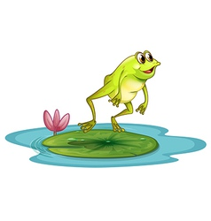 A frog at the pond vector