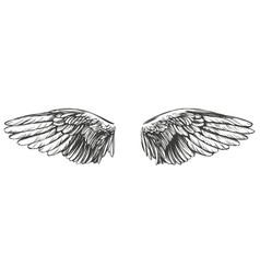 angel wings bird wings collection cartoon hand vector image
