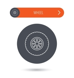 Car wheel icon Tire service sign vector image