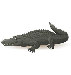 cartoon grey alligator isolated vector image